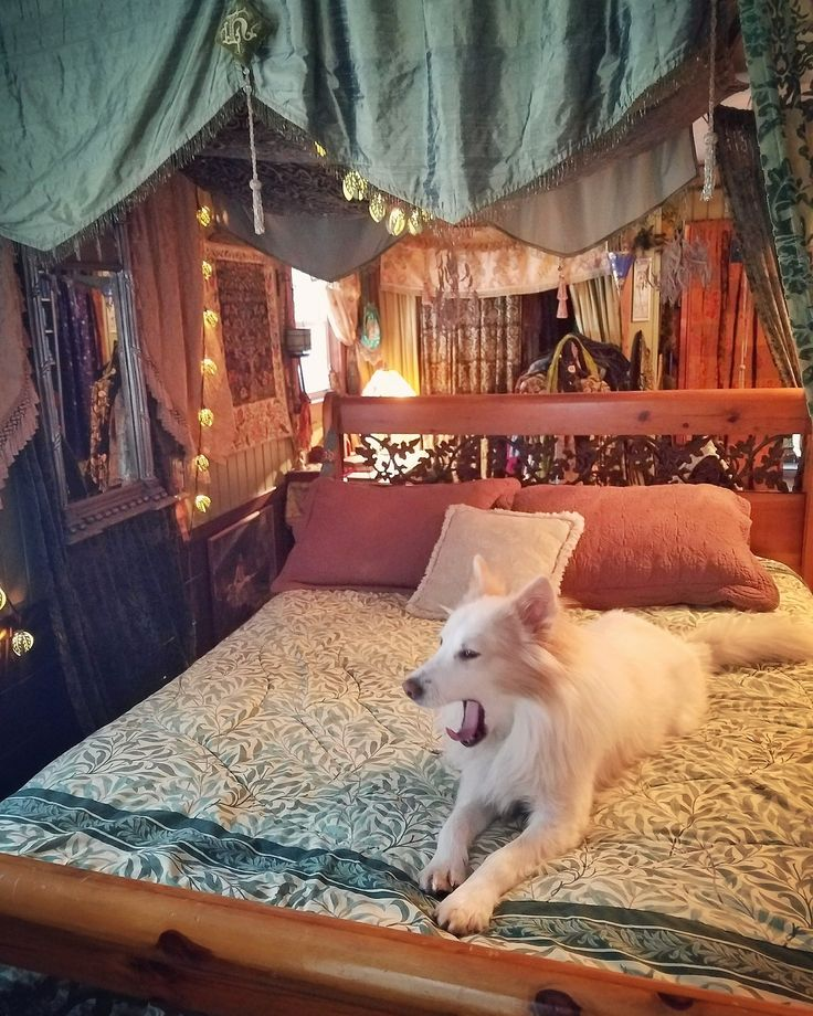 Excellent 17 Best Ideas About Rearrange Room On Pinterest Wash Room Largest Home Design Picture Inspirations Pitcheantrous