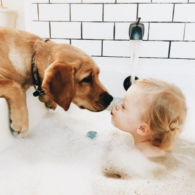 Kinder Susseste Haustiere Hunde Und Kinder Ausgestopftes Tier