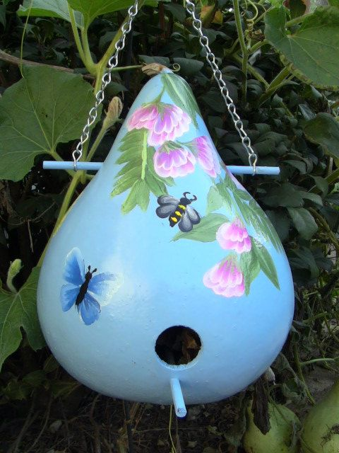 Heavenly Blue Birdhouse Gourd With Tropical by inmypaintedgarden