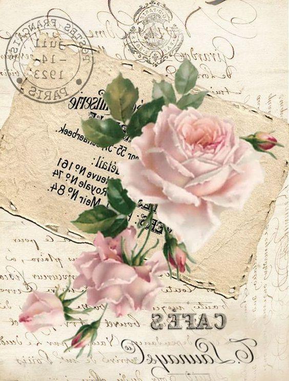 Pink rose, postmarks, cafes