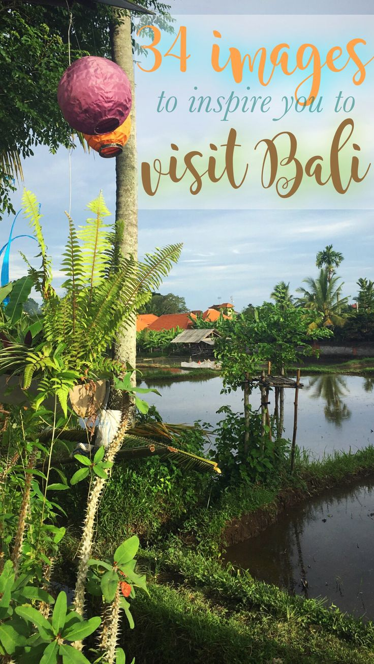 Bali is known as the Island of the Gods - and for good reason! These wanderlusty images will inspire you to book a trip to Bali! #bali #wanderlust #travelinspo