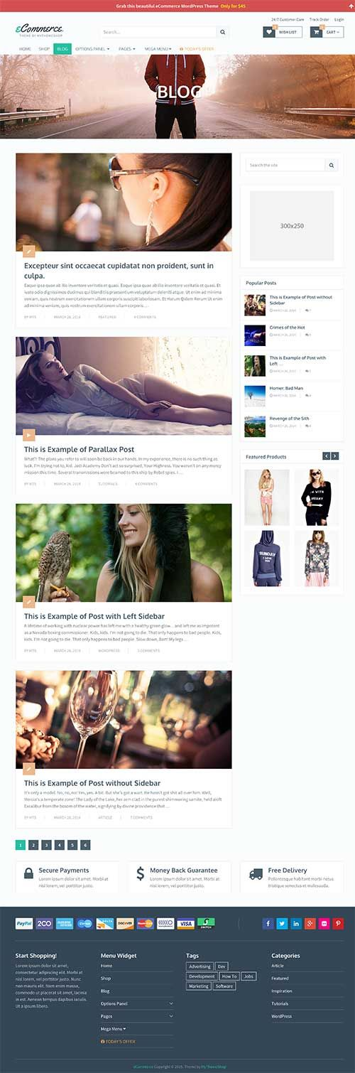 eCommerce Theme | MyThemeShop #wordpress #theme #template #blogging #website #online #business