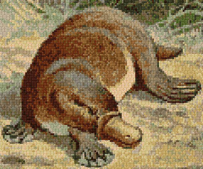 Platypus, free pattern from cross-stitch-pattern.net