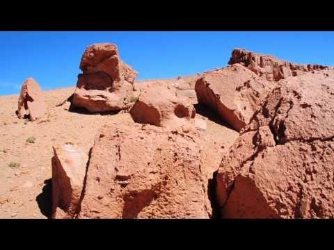 Reserva Nacional los Flamencos, San Pedro de Atacama y más