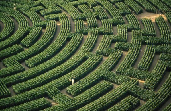 irrgarten maislabyrinth reignac-sur-indre in frankreich | amazing,