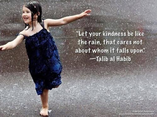 Let your Kindness be like the rain, that cares not whom it will falls upon.  -Talib Al Habib  http://berniefallon.com/about-goodology/