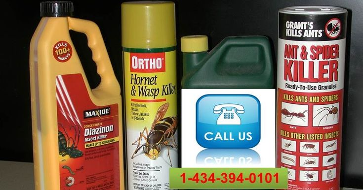 """want to Protect your Home From Pesticides call @1-434-394-0101 """"FREE PEST INSPECTION for Homeowners-Renters-Business Owners   Vermin control Services for contract holders, inhabitants and business visionaries in Lynchburg, Virginia and including zones. Our QualityPro arranged ensured trouble Control organization authorities understand your stresses and will wipe out issues Call Us 1-434-394-010"""" #PestControlServiceLynchburg, #PestControlservicesLynchburg"""