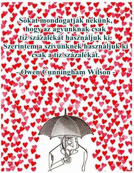 Owen Wilson idézete agyunk és szívünk kapacitásának kihasználásáról. A kép forrása: Ara Rauch közösségi oldala