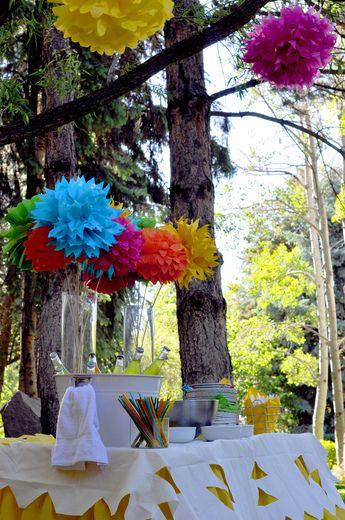 "Photo 10 of 26: Fiesta / Birthday ""Fiesta Forty!""   Catch My Party"
