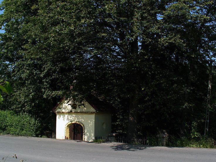 Cmentarz wojenny nr 374 - Wiśniowa - austriacki cmentarz wojenny z okresu I wojny światowej wybudowany przez Oddział Grobów Wojennych C. i K. Komendantury Wojskowej w Krakowie