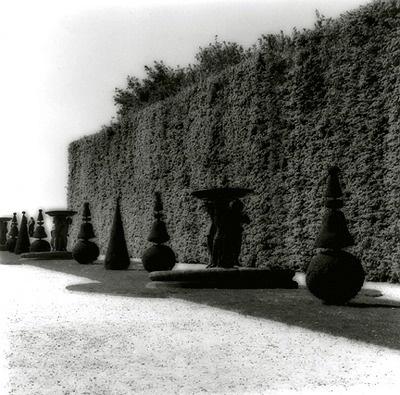 Lynn Geesaman, Versailles (2007)