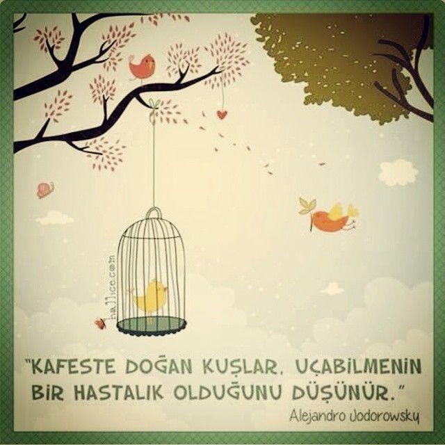 Melisa Aslı Pamuk @melisapamuk Instagram photos | Websta (Webstagram)