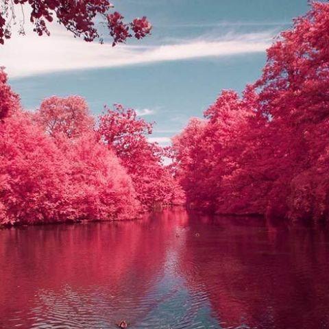 Güzel Kiraz nehri, batı virginia.