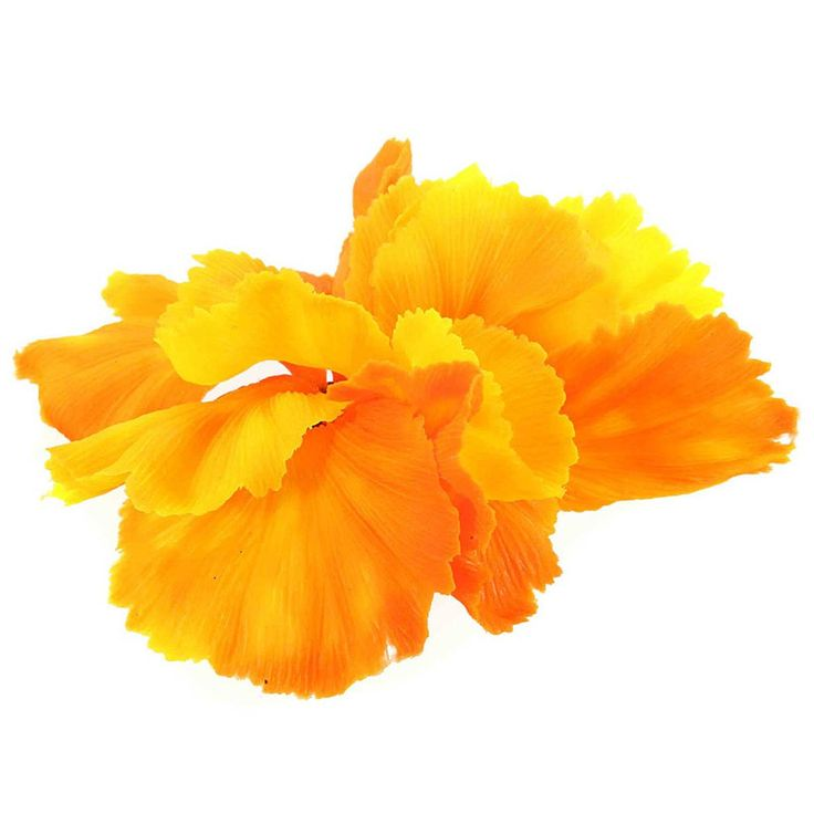 Orange Accent Soft Silicone Aquarium Decor Simulation Coral Aquarium Ornament Fish Tank Plant Decoration