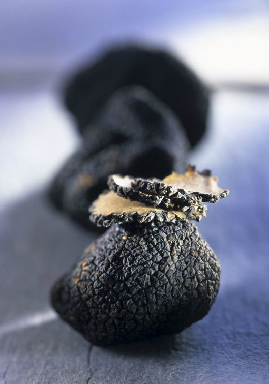 truffle. All I can respond with is a curse that means surprise and joy.