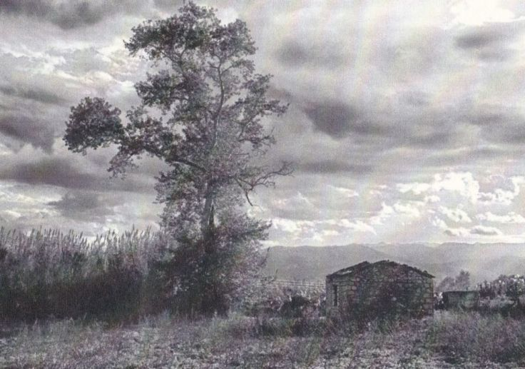 Τοπίο στον Ορχομενό.«Φωτογραφίες και Αναφορές» από το Φώτη Καζάζη