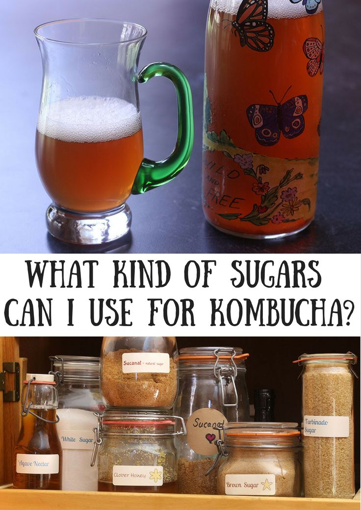 What Kind of Sugars Can I Use for Kombucha?? What to use, what not to use and what differences they make in flavor and scoby development! ~Cultured Food Life
