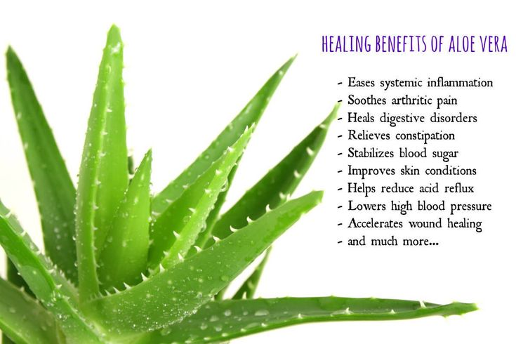 10 Amazing Benefits of Aloe Vera – You`ll Never Buy Expensive Products Again