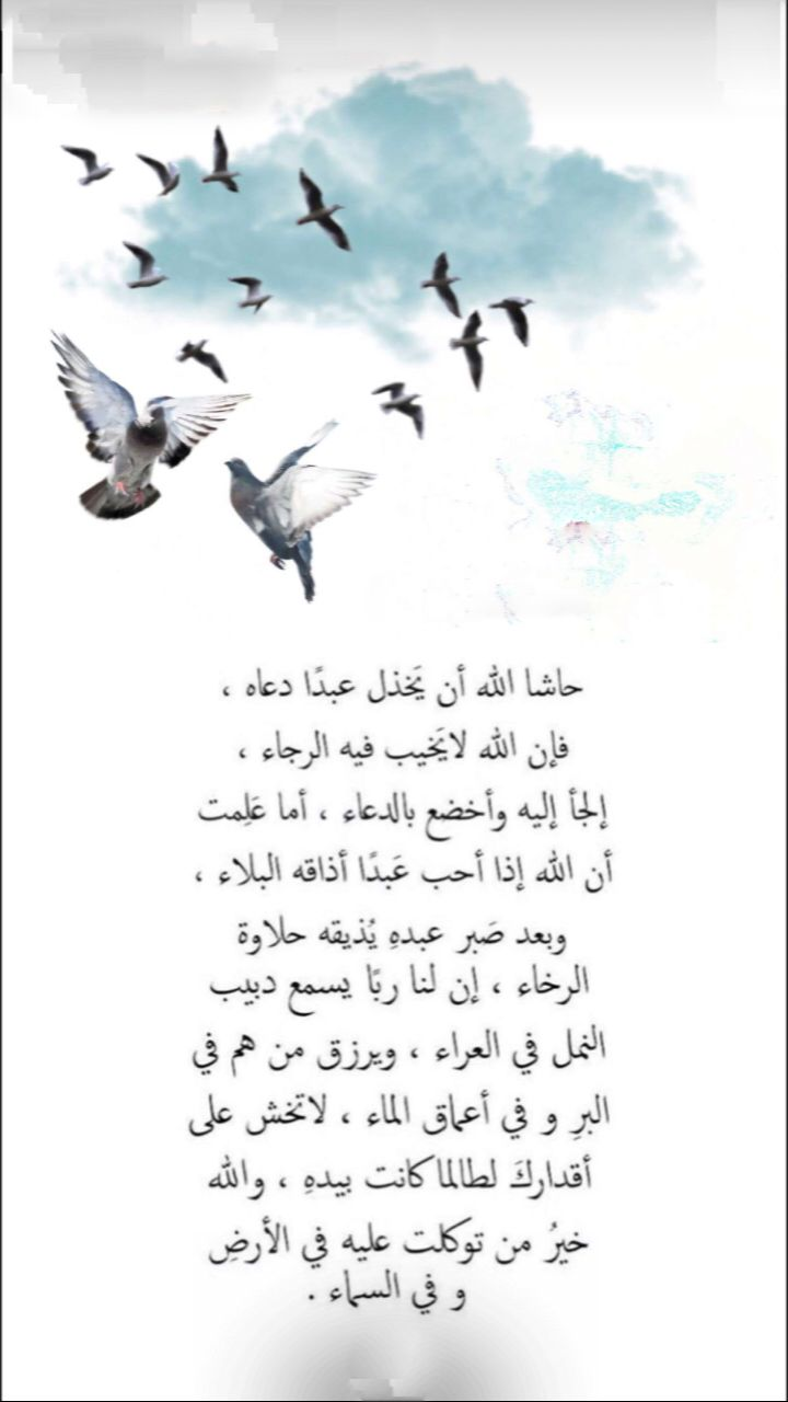 Pin By Rody On دعاء Beautiful Words Words Quotes