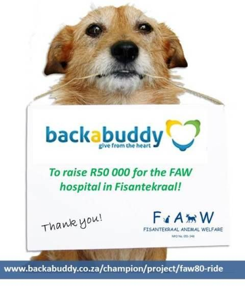 Please don't forget to 'Back a Buddy' in our FAW80 Cycle Challenge. We need your help to raise the R50 000 needed to complete our surgery!  https://www.backabuddy.co.za/champion/project/faw80-ride  Contact us on 062 258 3547 or info@faw.za.org for more info.  To donate directly into our account: Nedbank - Fisantekraal Animal Welfare Cheque account Acc no: 1039094171 – Branch no: 10 39 10 (Tygervalley) Reference: Surgery