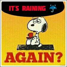 Raining Good News!  Flash Floods etc No Way!