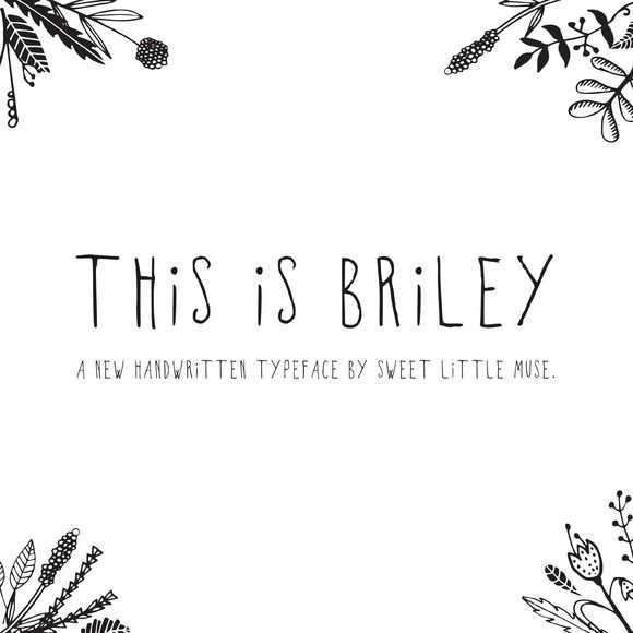 Briley Typeface by SweetLittleMuse on Creative Market