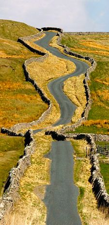 Stone walls on Yorkshire Dales road, England