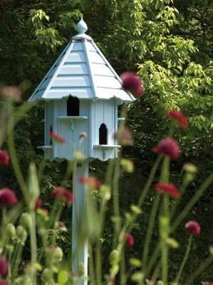 25 Best Bird House Plans Ideas On Pinterest