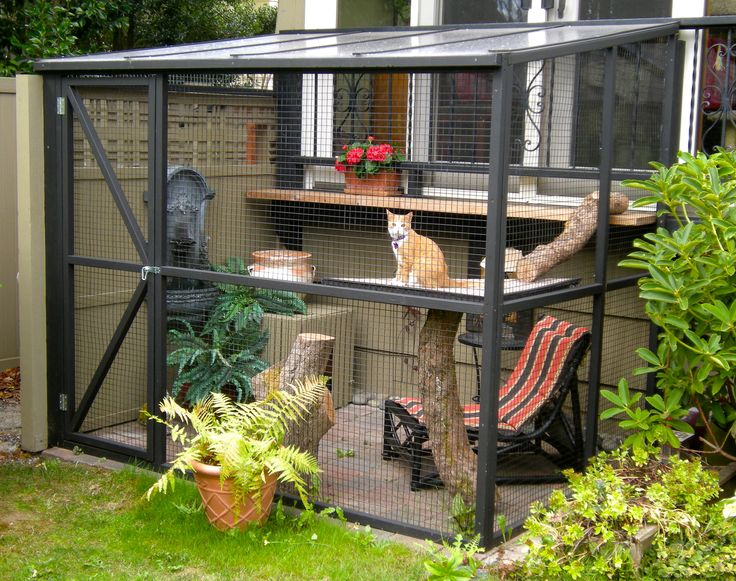 I like the slanted roof. Put this underneath the deck. Slanted roof to keep the cats dry, etc.