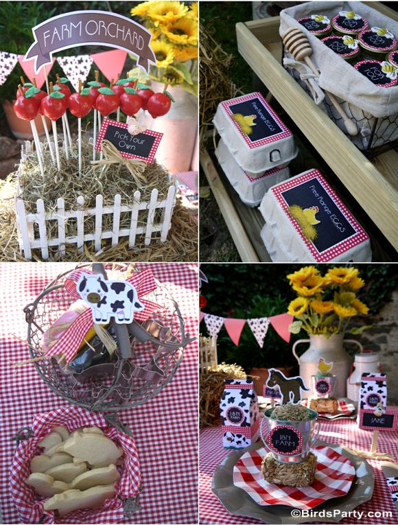1000+ images about BOY or GIRL, Twins, Unisex Birthday  ~ 212735_Birthday Party Ideas Unisex