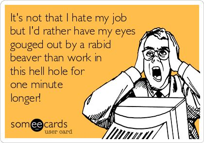 It's not that I hate my job but I'd rather have my eyes gouged out by a rabid beaver than work in this hell hole for one minute longer!