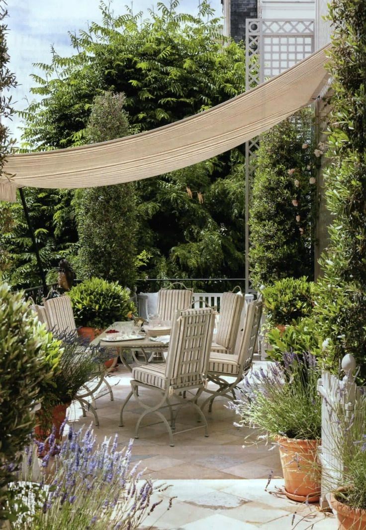 covered patio via Habitually Chic®I could easily do this for shade in the summer and to protect my citrus trees in the winter. Using a painters tarp and a couple of poles . . .