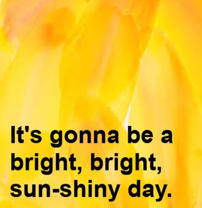 quote, its's gonna be a bright, bright, sun-shiny day, www.ladychatsalot.com