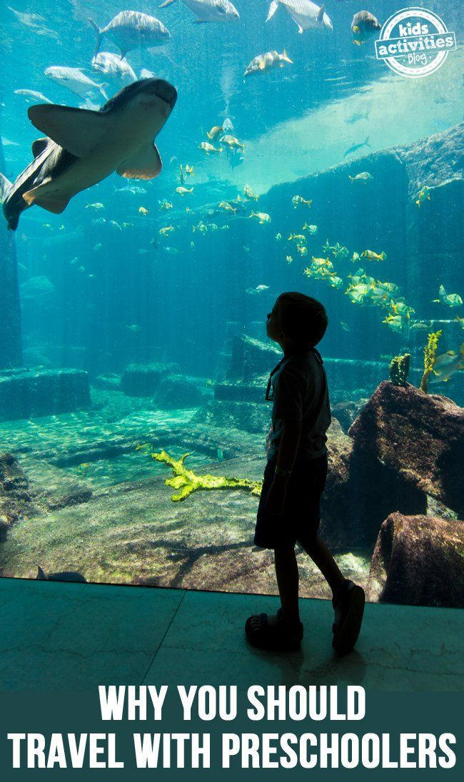 Why You Should Travel with Preschoolers