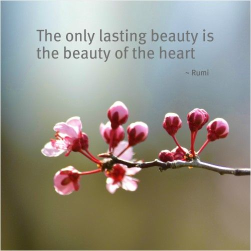 "Tattoo Ideas & Inspiration - Quotes & Sayings | ""The only lasting beauty is the beauty of the heart"" - Rumi 