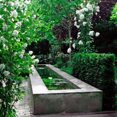 Bernadette den Bieman creëert unieke bijzondere sfeervolle tuinen met gebruik van tijdloze mooie materialen en een uitgebalanceerd plan voor de beplanting.