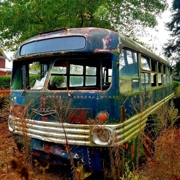 Retired Old NYC Bus, Long Island, Ny. Photo By Steve De
