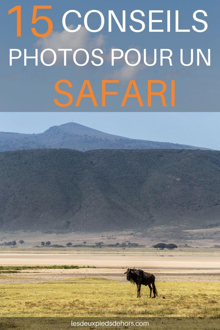 Vous partez en safari en Afrique (Tanzanie, Kenya, etc.), Asie du Sud-est ou autre, je vous livre mes 15 meilleurs conseils photo pour réussir votre safari. #photo #safari #afrique #tanzanie #photographie #kenya #conseils