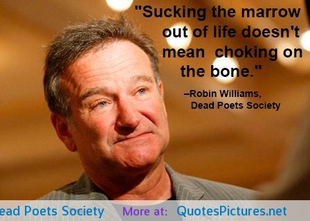 Best Robin Williams Images On Pinterest Robins Beautiful - 14 hilarious inspiring quotes from robin williams