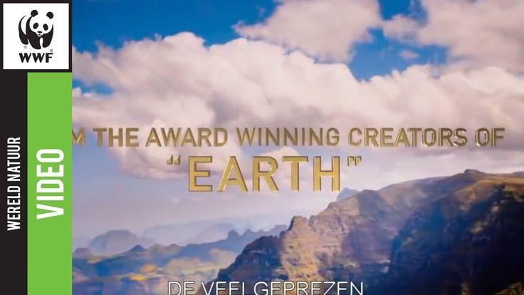 Een overweldigende reis over het Afrikaanse continent (trailer film Natu...