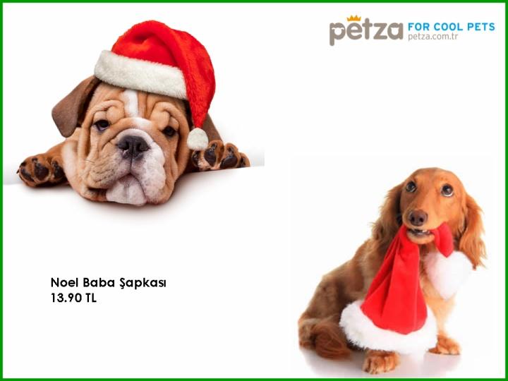 http://www.petza.com.tr/Santa-Hat-Noel-Baba-Sapkasi,PR-1979.html