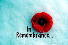 Image result for canadian remembrance day pics