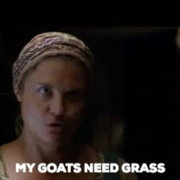 """936 Likes, 11 Comments - Outlander Cast (@outlandercast) on Instagram: """"""""13 Work Excuses Outlander Season 3 Taught Me"""" — #1 """"My Goats Need Grass!"""" ** for the other excuses…"""""""