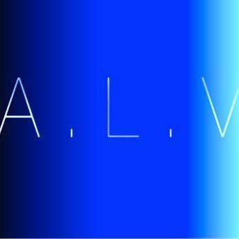 A.L.V HOLDINGS www.alvholdings.co.za