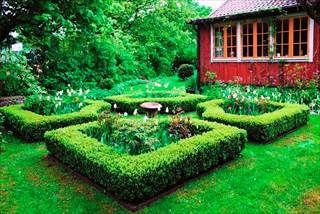 Att anlägga en trädgård