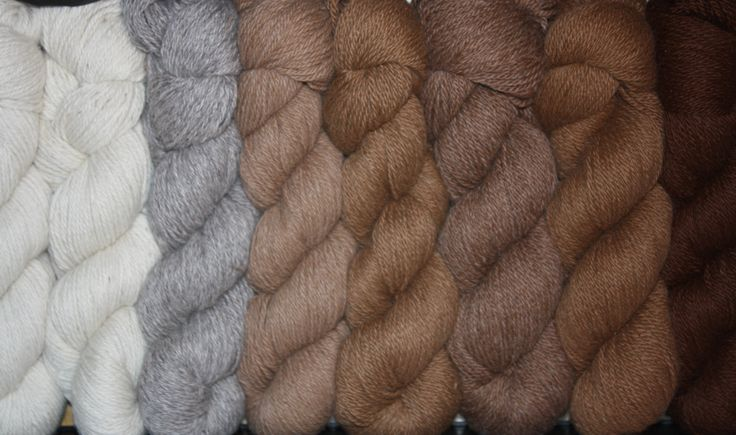 Complete range of new #yarns available - all natural colours. #AlpacaYarn