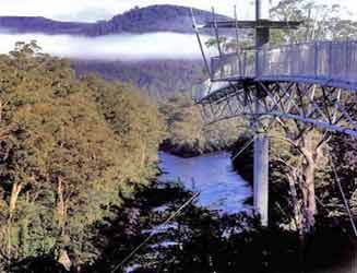 Tahune Airwalk :: Tourist Information and Prices :: Far South Tasmania Far South Tasmania :: Southport, Dover, Hastings, Lune River, Ida Bay, Cockle Creek, Tourism, Bushwalks, Food, Accomodation, Bed and Breakfast, Self-Contained, Camping, Fishing, Surfing, Sailing