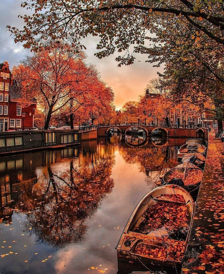 "Map of Europe on Instagram: ""Amsterdam 🍁❤…"
