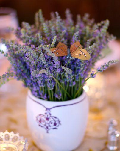 David Tutera- lavender  in small pots