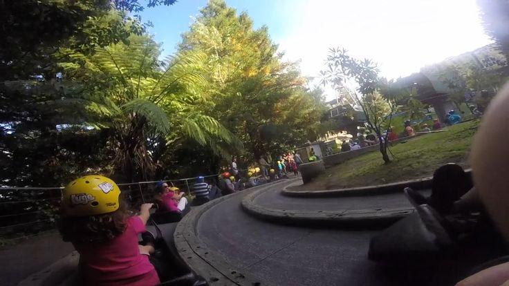 The Luge - Rotorua - New Zealand - Adrenaline Activities - Fun for Family - Skyline Rotorua - RotoVegas